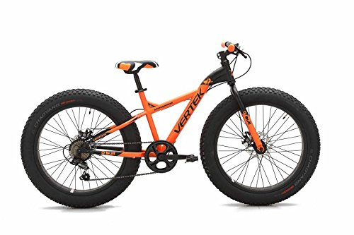Vertek Bike Fat Bike Fat Bull 24 Review