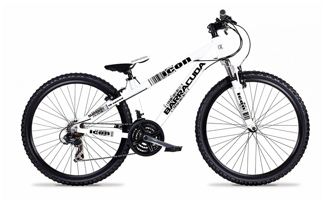 Barracuda Boy's Icon Bike Review