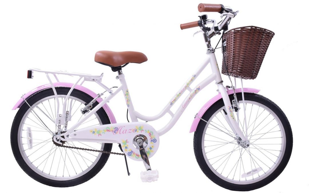 Ammaco Haze Traditional 20' Wheel Girls Bike Review