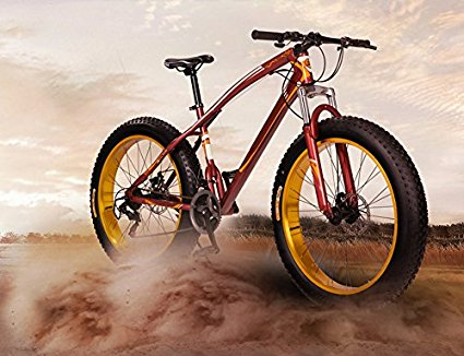Yoli® 7/21/24/27 Speed 20/26 Inch Fat Bike / Snow Bike Review