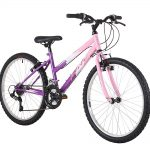 flite girls mountain bike
