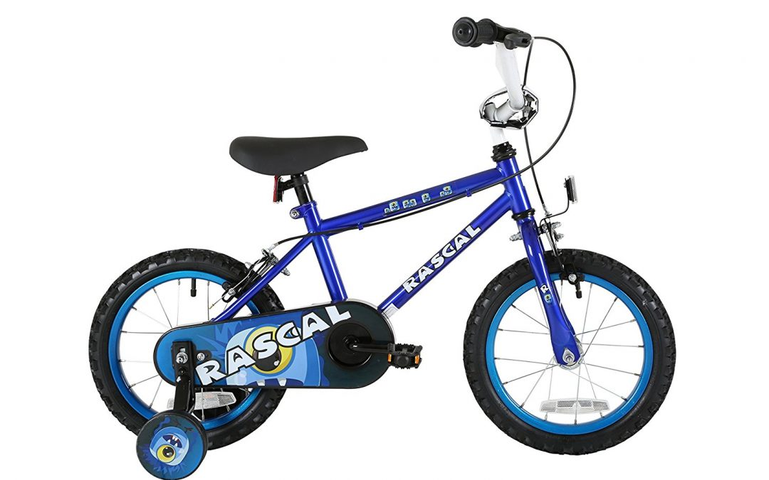 Sonic Rascal Kids Bike Review