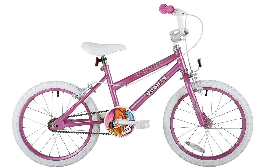 Sonic Beauty Girls Kids Bike Review