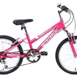 Ammaco Sienna girls full suspension bike