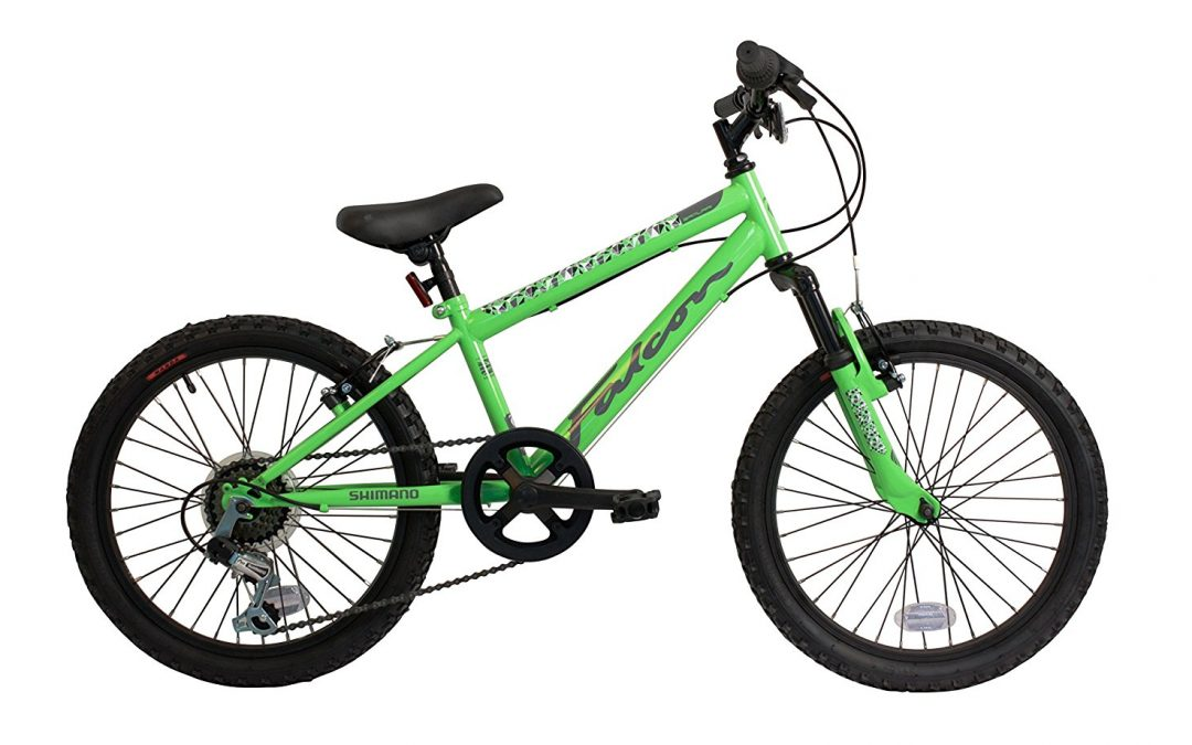 Falcon samurai boys' 11 mountain bike Review