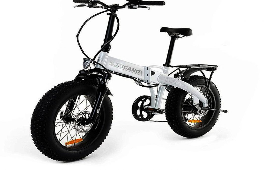 MONSTER 20 Folding Electric Bike Review