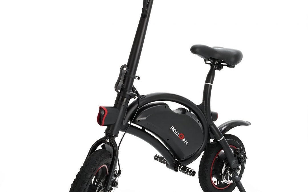Rollgan Dolphin Electric Bike Review