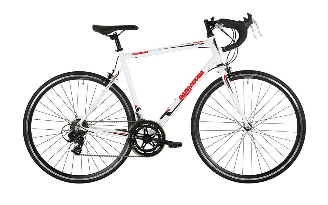Barracuda Corvus Road Bike Review