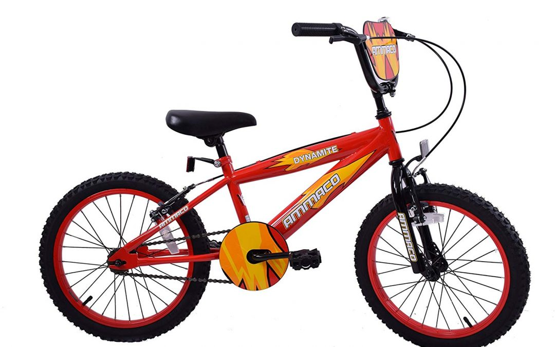 "Ammaco Dynamite Boys 20"" Wheel BMX Kids Bike Review"