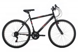 Raleigh Ativ By Flyte II