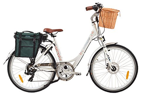 E-Ranger cruiser floral electric bike Review