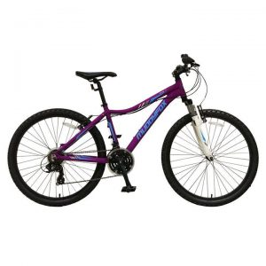 muddyfox divine 100 mountain bike