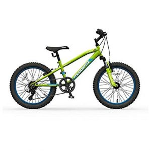 muddyfox alpha 20 mountain bike