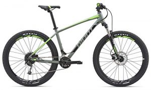 Giant Talon 19 Mountain Bike