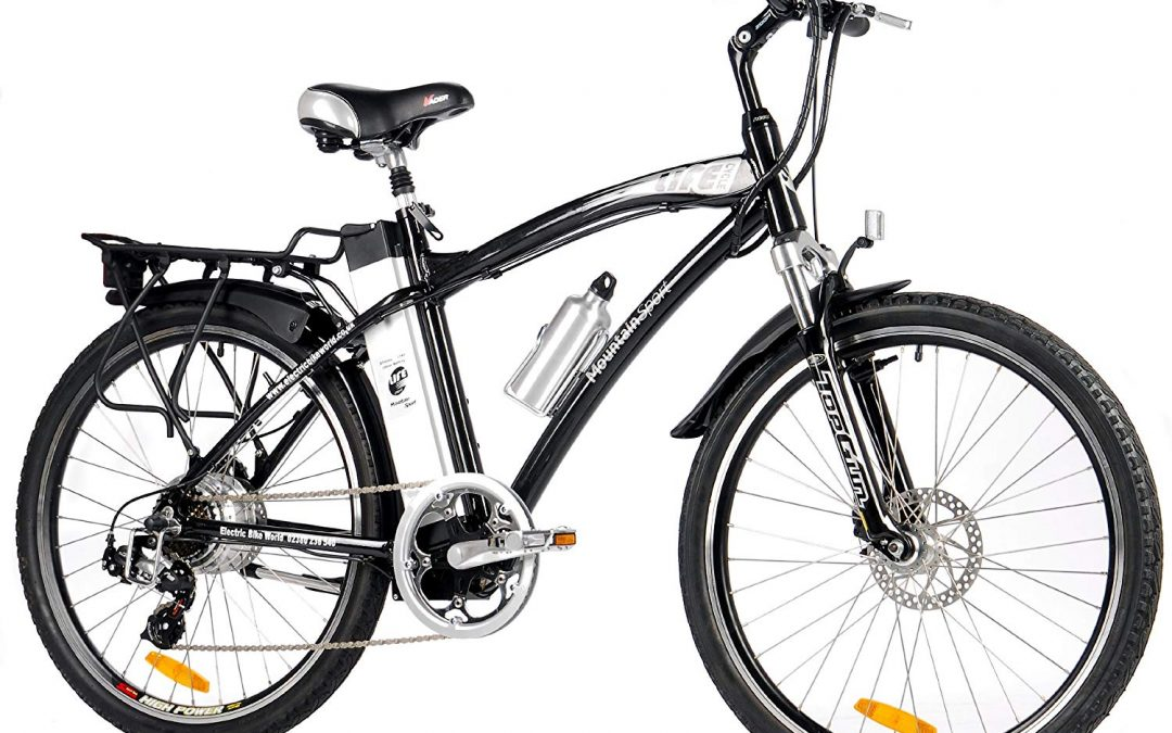 LifeCycle Mountain Sports Electric Bike