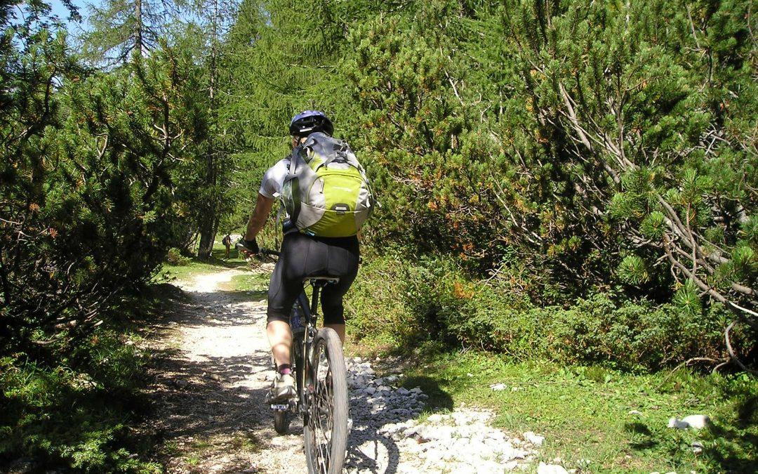 Welsh Mountain Bike Trails