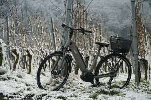 electric bike in the snow