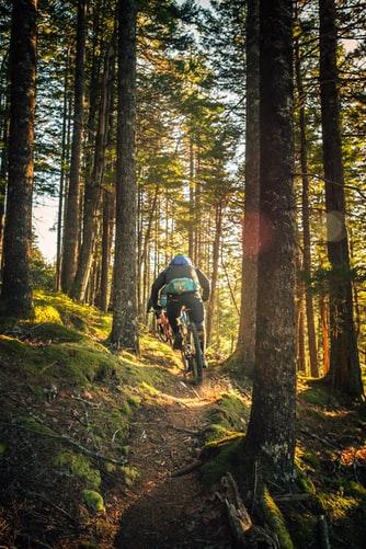 Best Mountain Bike Under £200? (October 2021)