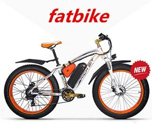Richbit fat bike