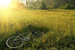 mountain bike in field