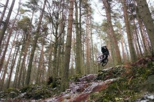 MTB in the forest