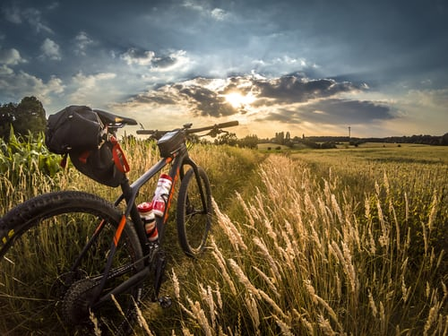 What Muscles Does Mountain Biking Work?